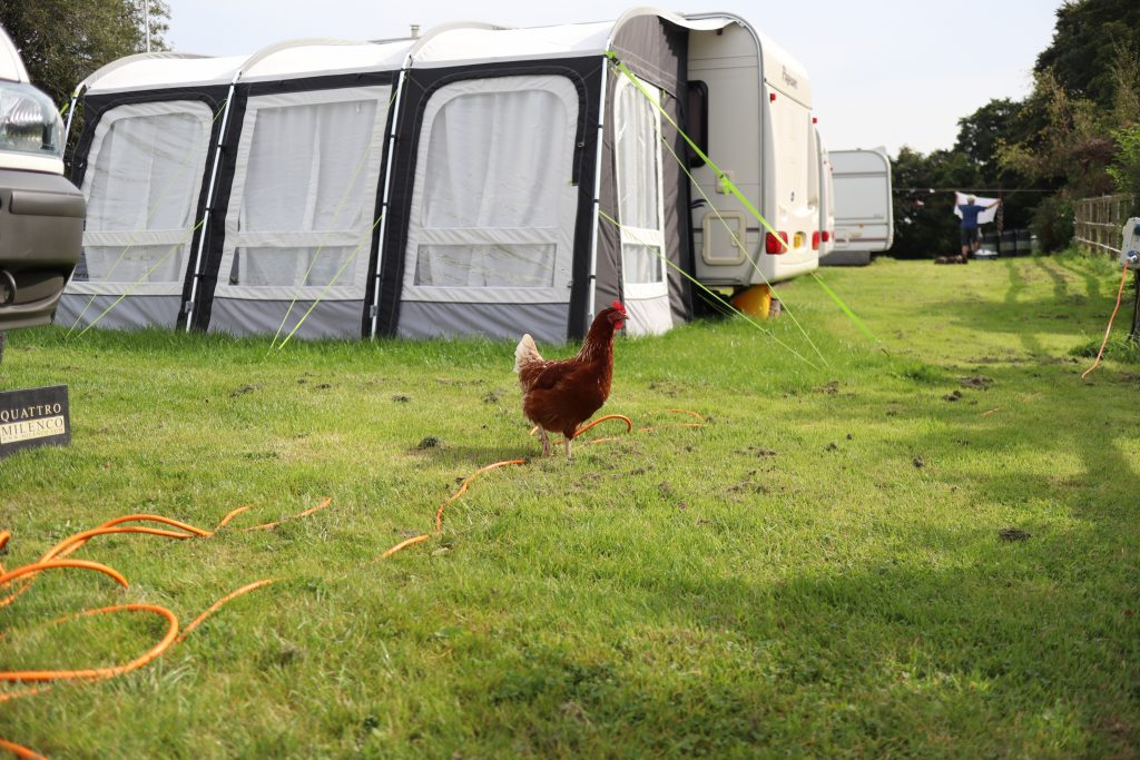 High Bank Farm Poulton le Fylde camp site